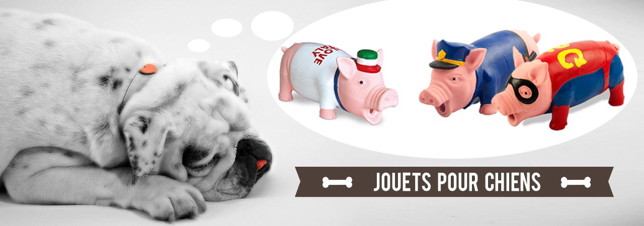 Jouets Pour Chien Dans La Famille Cochon Nozarrivages