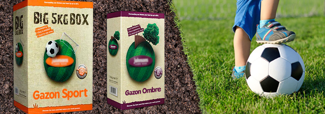 semence pour gazon quel green tes vous nozarrivages. Black Bedroom Furniture Sets. Home Design Ideas