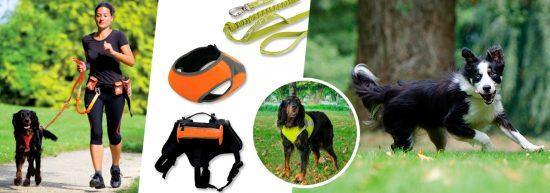 Gilets de sécurité, harnais et laisses pour chien
