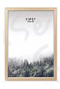 image encadrée forêt