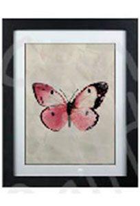 image encadrée papillon rose