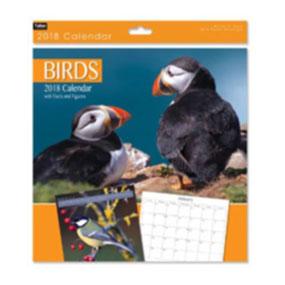 calendrier oiseaux