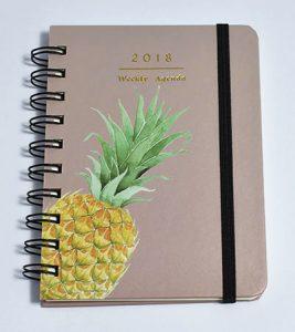 agenda ananas