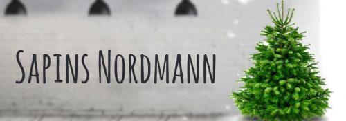 sapins Nordmann