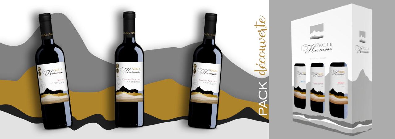 pack découverte de vins chiliens