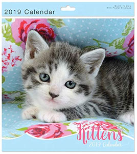 calendrier 2019 chatons kittens mignons