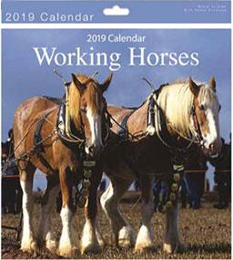 calendrier 2019 chevaux