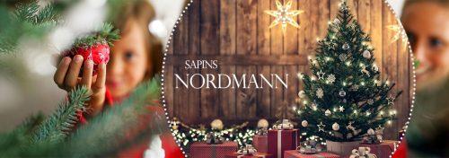 sapins Nordmann naturels