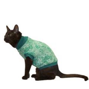manteau chat