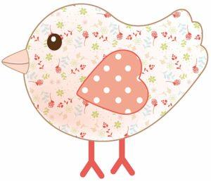 kiwi l'oiseau